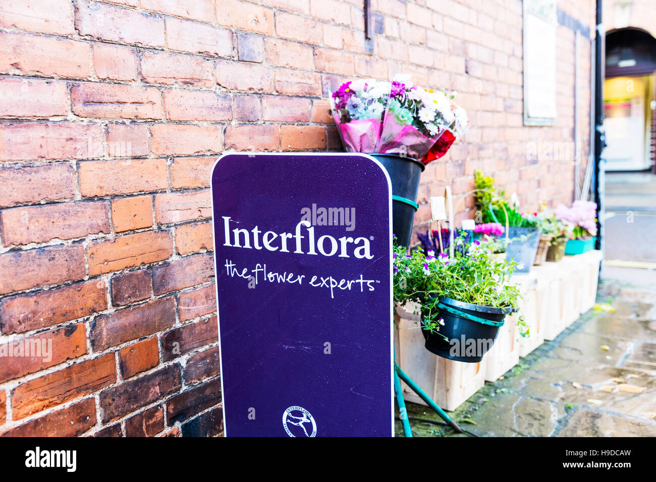 Interflora Photos Interflora Images Alamy