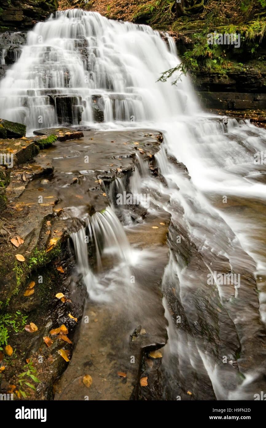 La Pennsylvanie paysage cascade Salt Springs State Park, comté de Susquehanna, en Pennsylvanie aux États Photo Stock