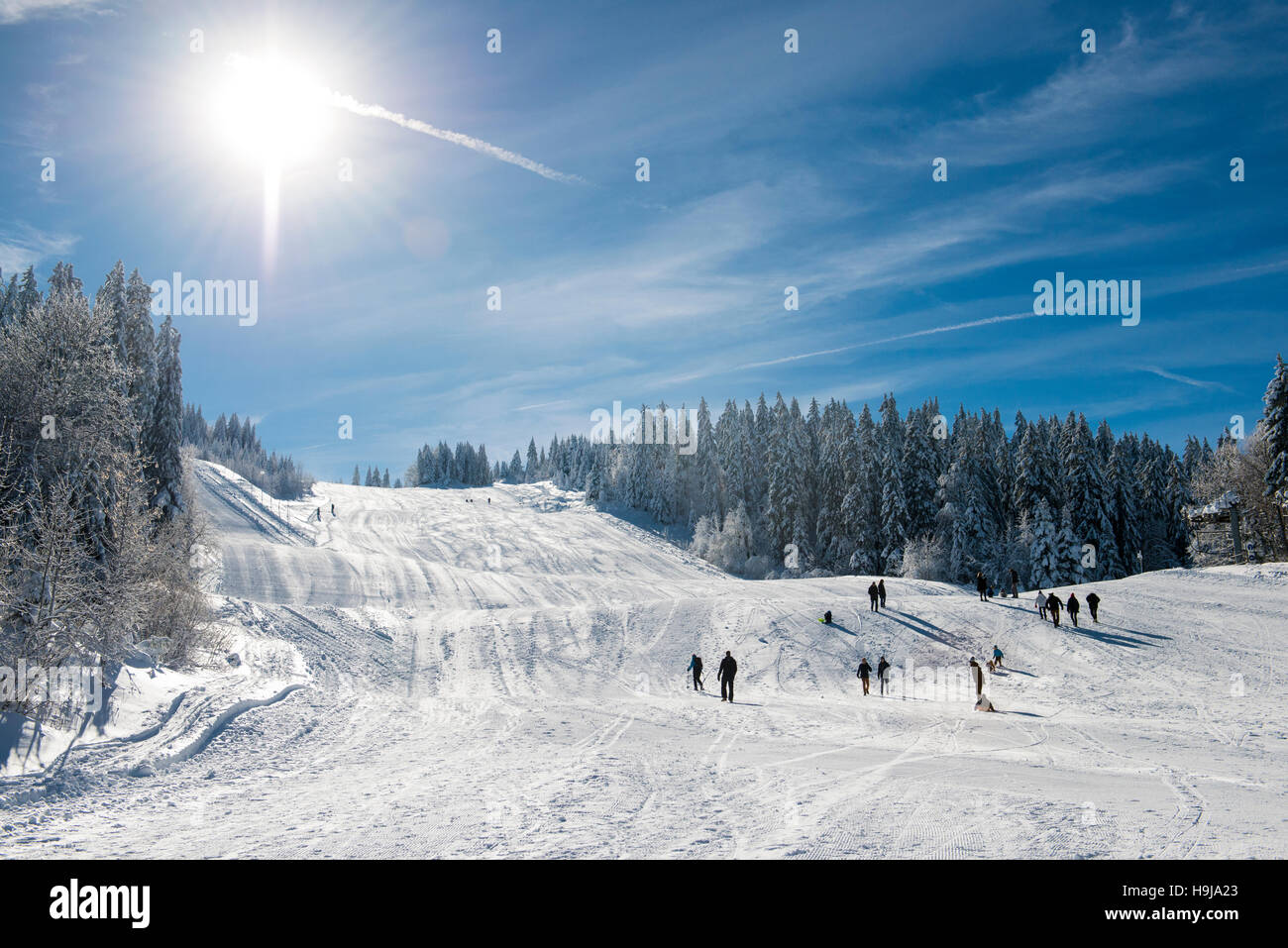 Ski Run sur le Mont Rond, Col de la Faucille, Ain, Jura français, France Photo Stock