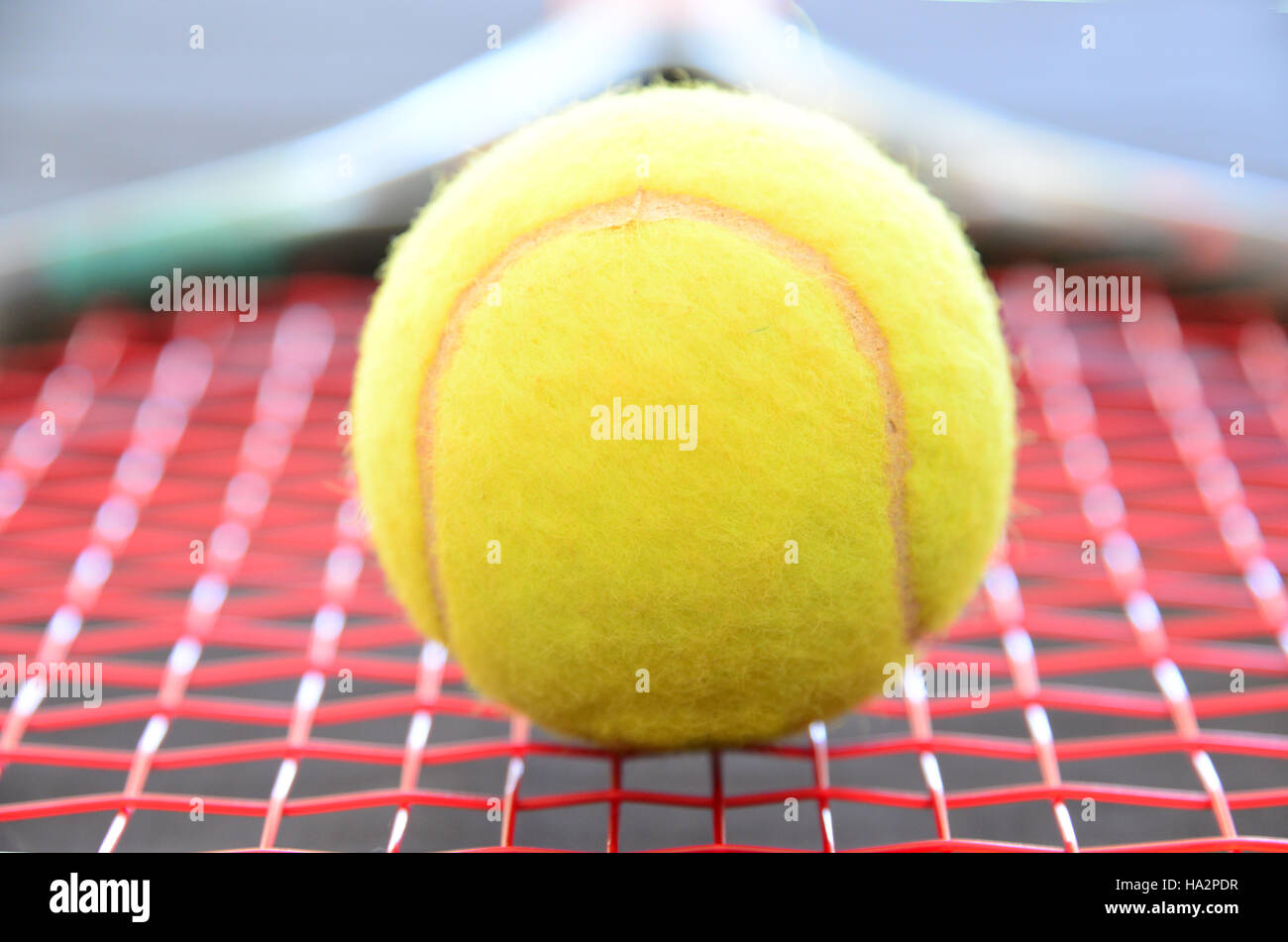 Close-up d'une balle de tennis sur une raquette de tennis Photo Stock