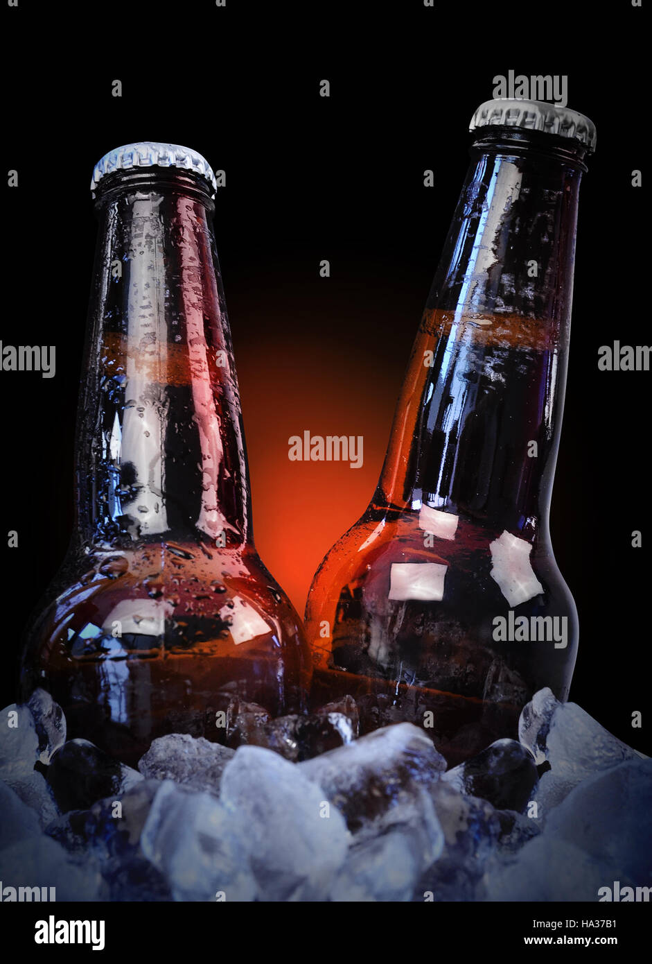 Deux bouteilles de bière en verre à froid sont humides avec des gouttes d'un noir sur la glace avec l'arrière-plan pour un bar isolé ou partie concept. Banque D'Images