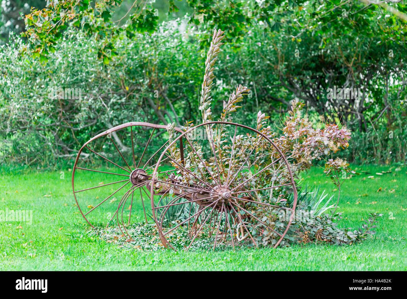 Mettre en œuvre l'agriculture anciens assis dans l'herbe avec les plantes croissant dans et autour d'elle. Photo Stock