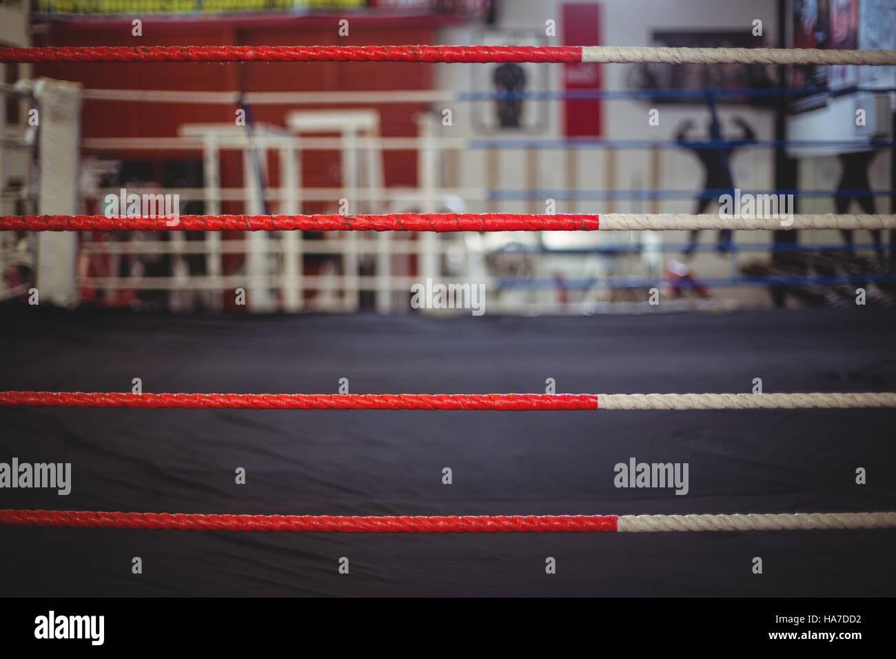 Corde de ring de boxe Photo Stock