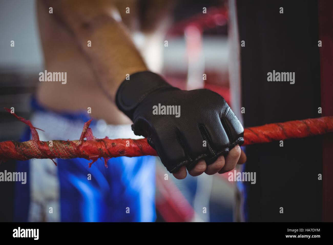 Boxer holding une corde Photo Stock