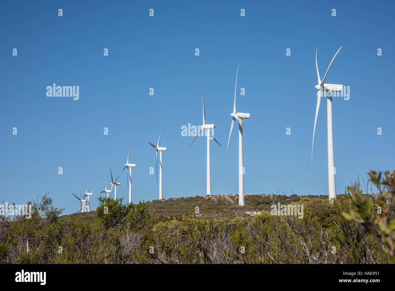 Kumeyaay wind turbine éolienne de production d'électricité, de la ferme à Tecate, diviser Photo Stock