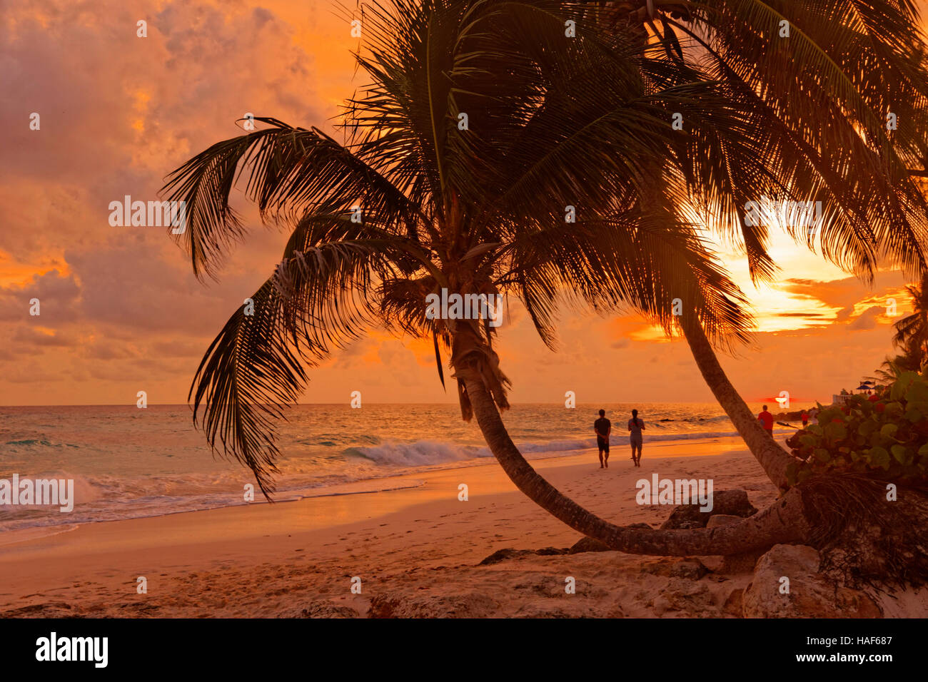Coucher du soleil à Dover Beach, St Lawrence Gap, Côte Sud, Barbade, Caraïbes. Photo Stock