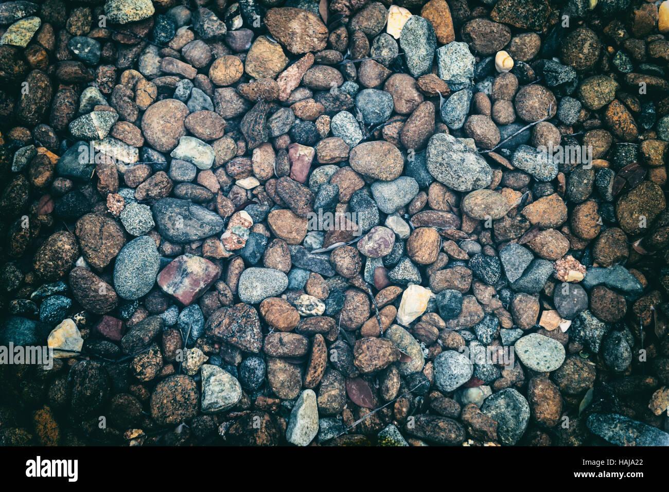Détail de galets colorés humide au bord de la mer ou dans un ...
