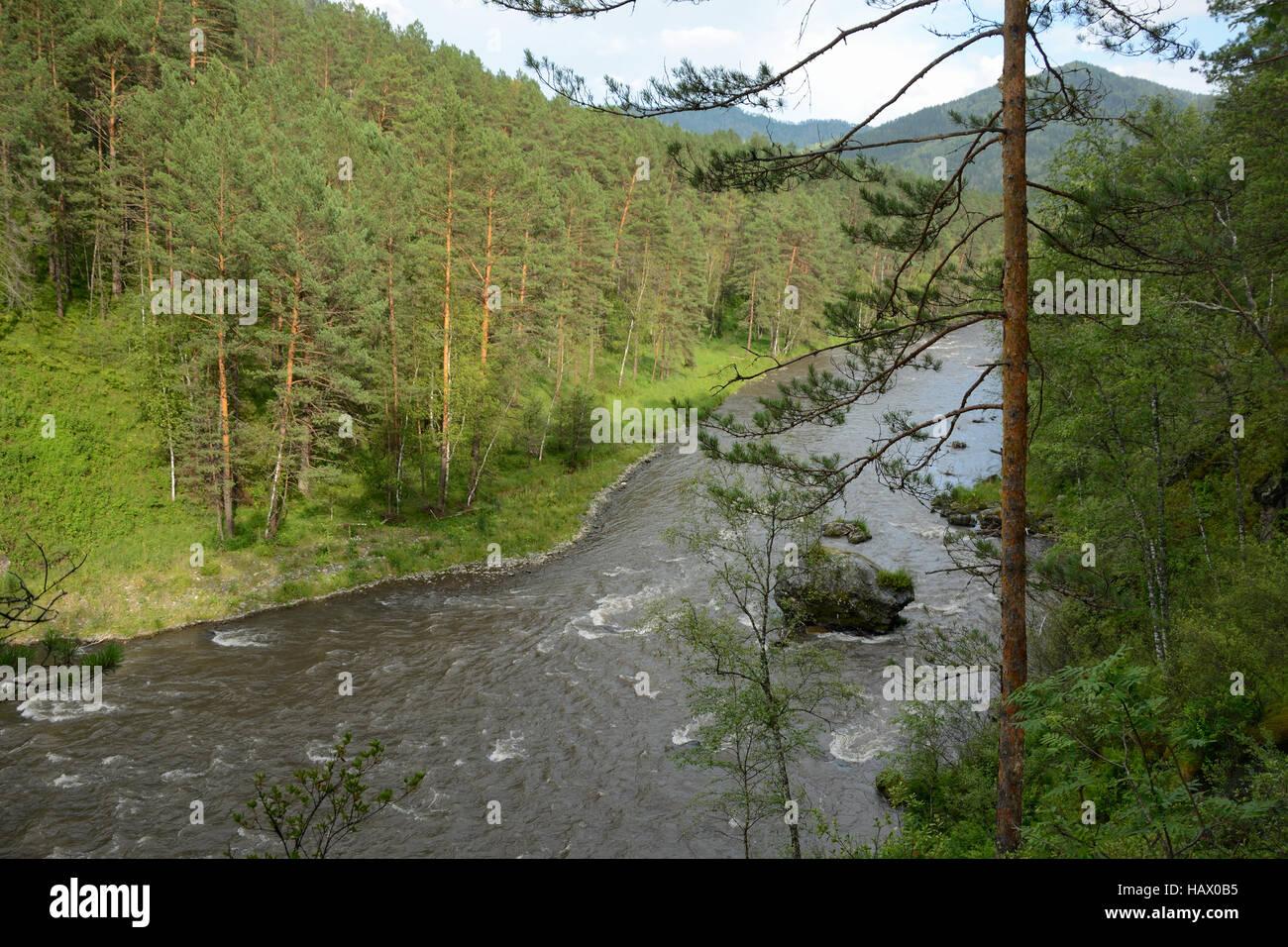 République de l'Altaï, stormy mountain river la Sema Banque D'Images