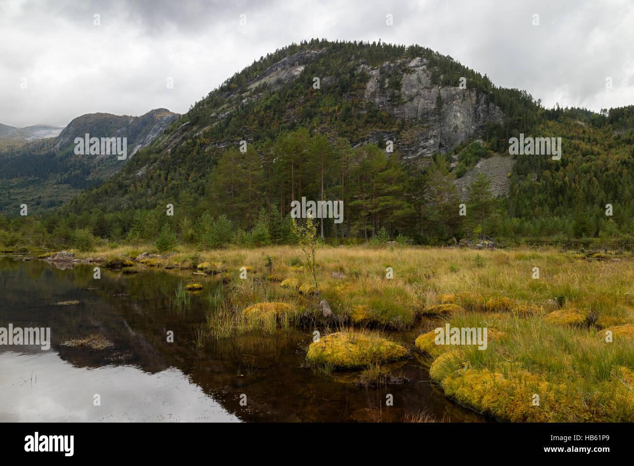 Paysages de la Norvège, Setesdal Photo Stock