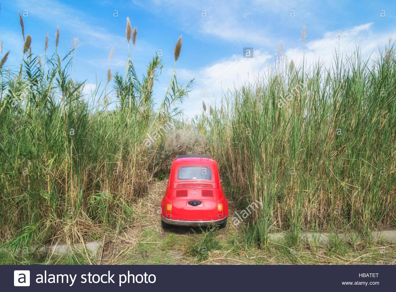 Voiture garée parmi les herbes hautes, Lipari, iles Eoliennes, Sicile, Italie Photo Stock