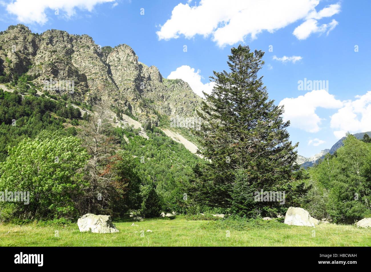 Le Parc National Aigüestortes à Panorama dans les Pyrénées Catalanes, Espagne Photo Stock