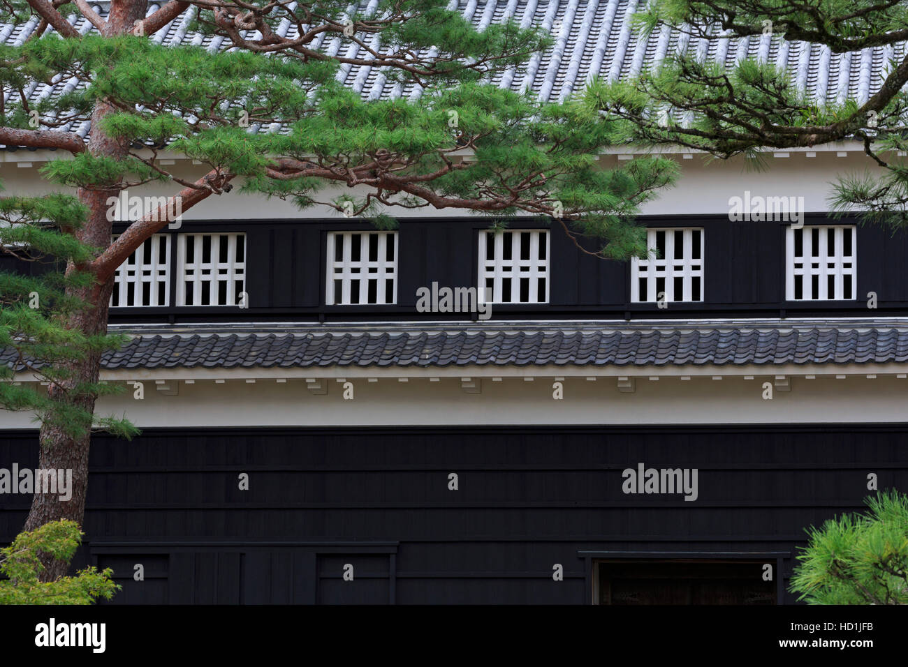 Château de Kochi, Kochi City, l'île de Shikoku, Japon, Asie Photo Stock