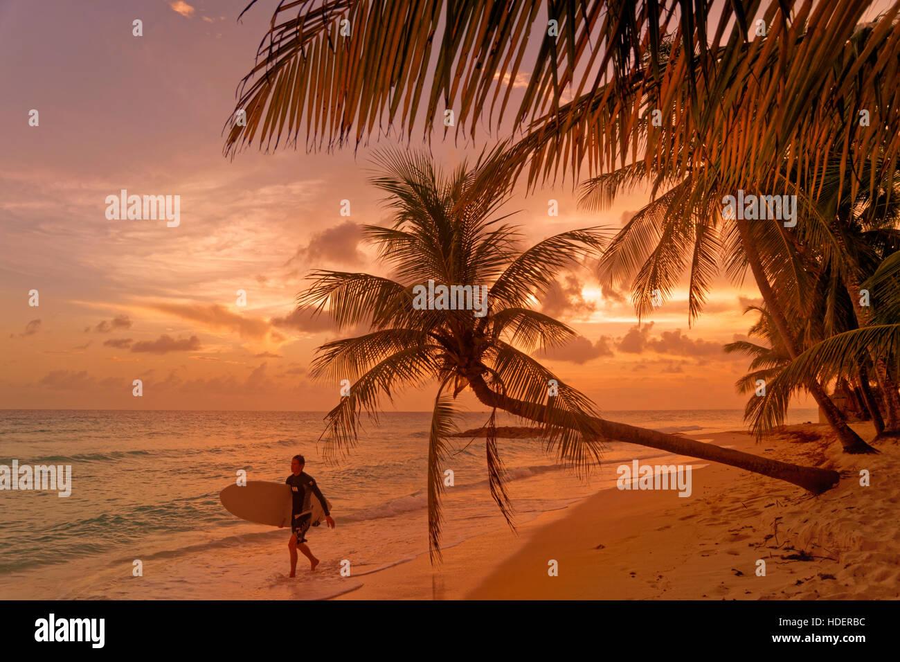 Surfer et coucher du soleil à Dover Beach, St Lawrence Gap, Côte Sud, Barbade, Caraïbes. Photo Stock