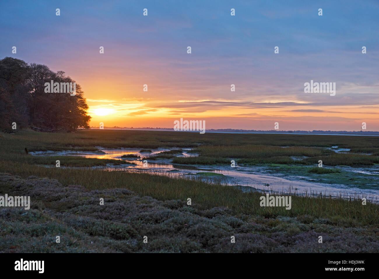 Chichester Channel à marée basse avec les arbres et le soleil couchant à l'automne de Itchenor, Photo Stock