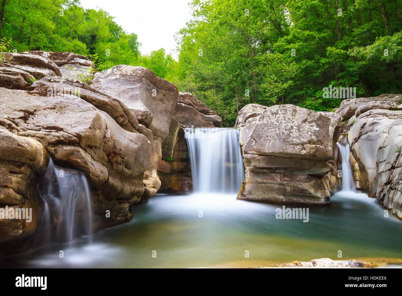 Paysage de cascade de rochers et d'arbres Photo Stock