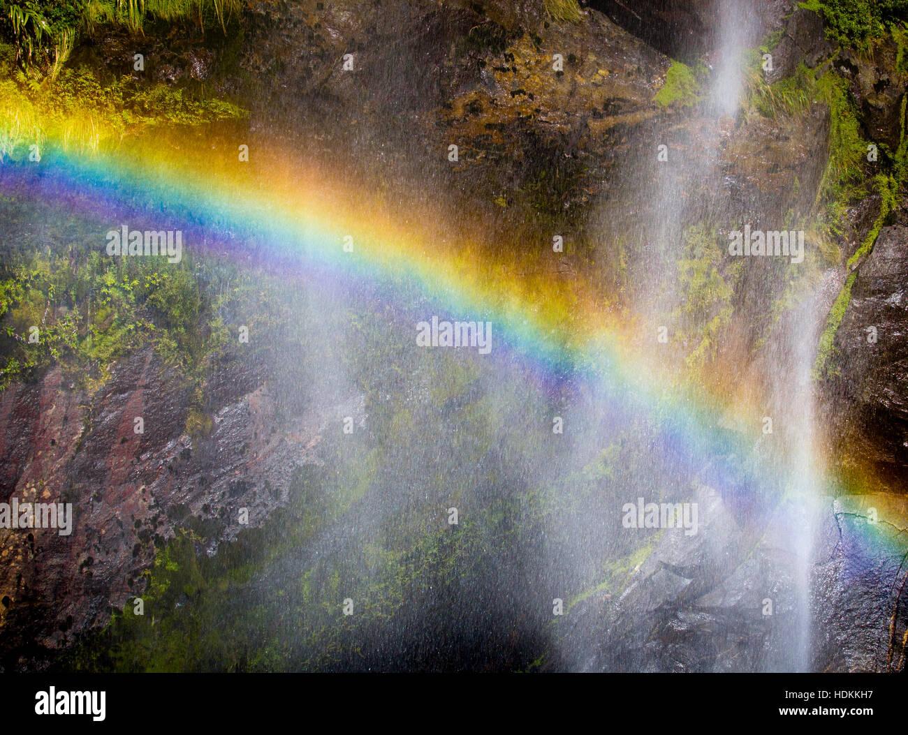 Rainbow causé par la réfraction de la lumière du soleil dans le fin brouillard d'une chute à Photo Stock