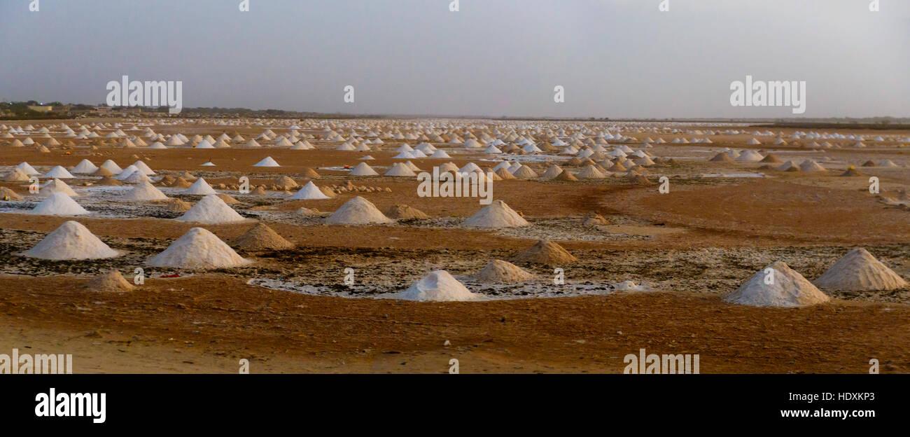 Champs de sel, au Sénégal Photo Stock
