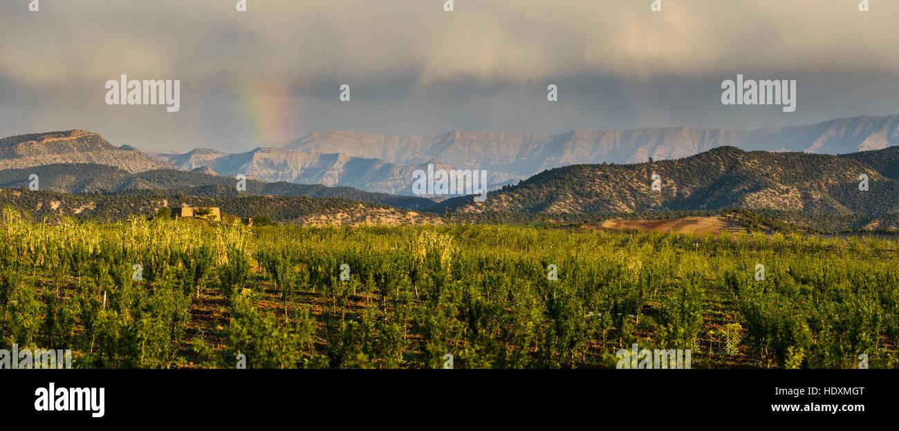 Le moyen-Atlas, Maroc Photo Stock