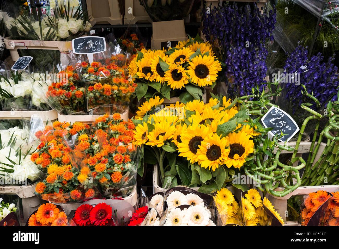 Bouquets de fleurs lumineuses à un décrochage du marché aux fleurs Photo Stock