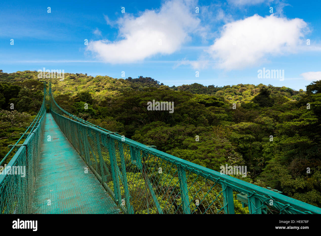 Pont suspendu sur le feuillage des arbres à Monteverde, Costa Rica, Amérique Centrale Photo Stock