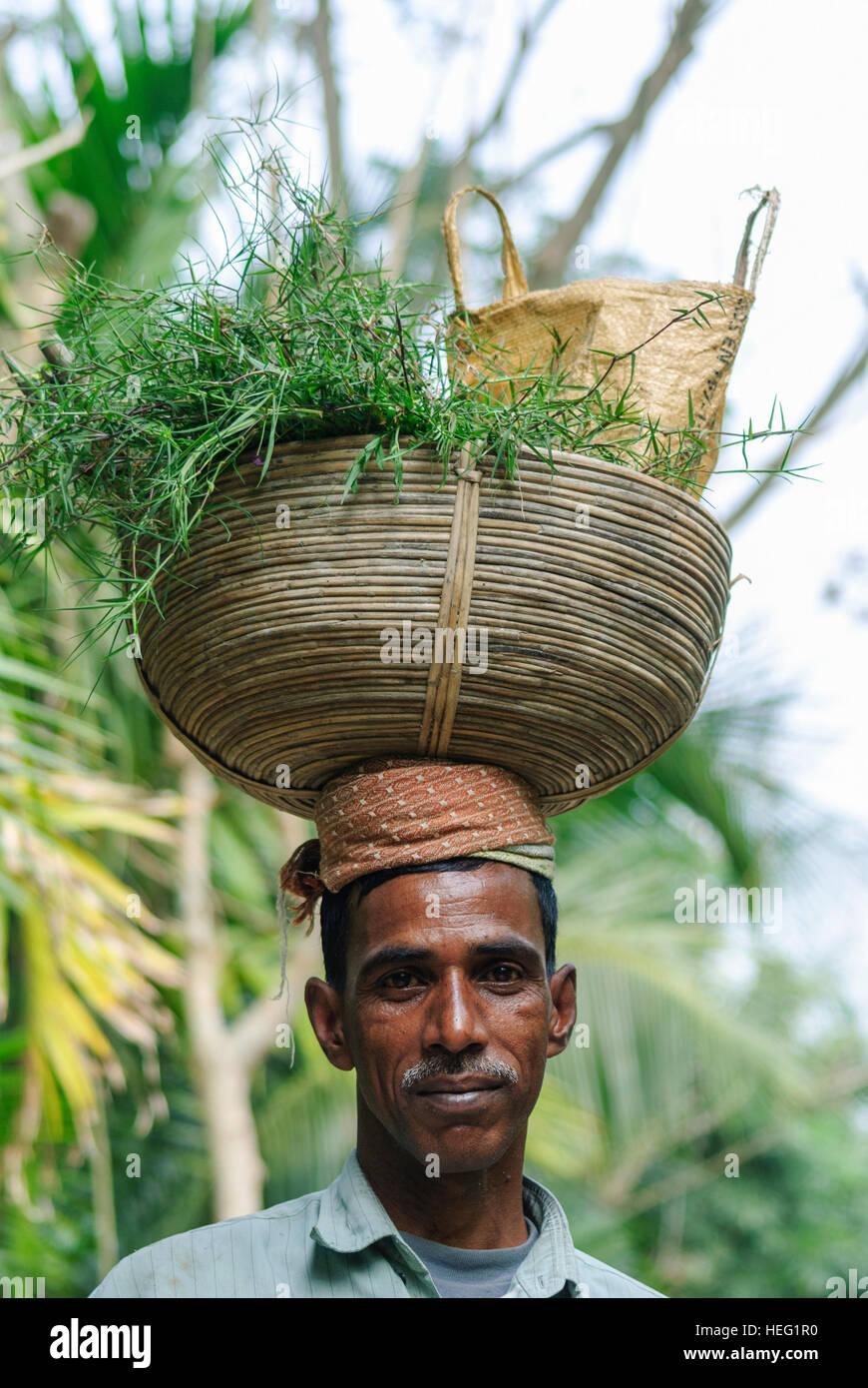 Hariargup: achats sur sa tête, la division de Khulna, Bangladesh Photo Stock