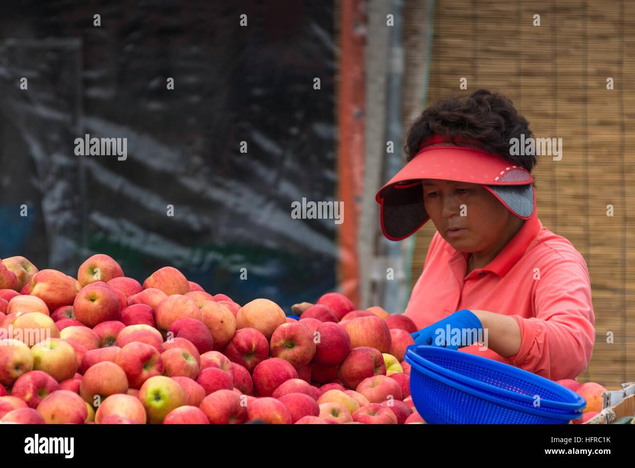 Vendeur Apple à l'aide de l'arrière d'un camion à Busan, Corée du Sud. Photo Stock