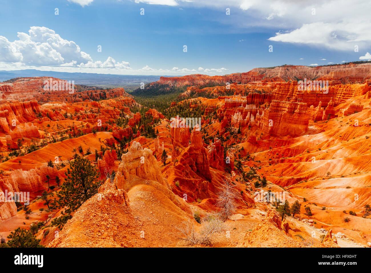 Bryce Canyon est une collection d'amphithéâtres naturels de côté du plateau Paunsaugunt. Photo Stock
