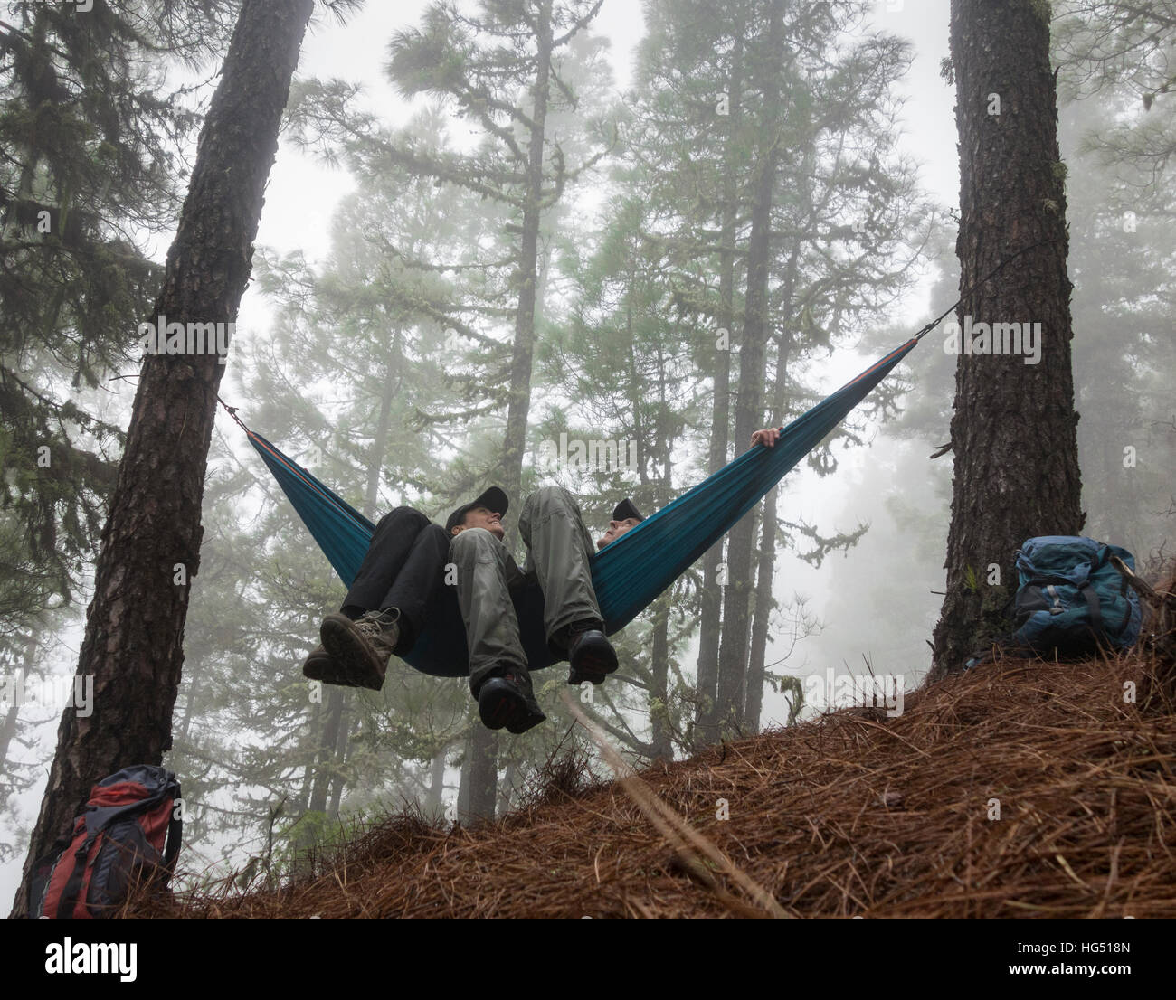 D'âge mûr de la randonnée, de détente dans l'hamac dans misty forêt de pins. Photo Stock