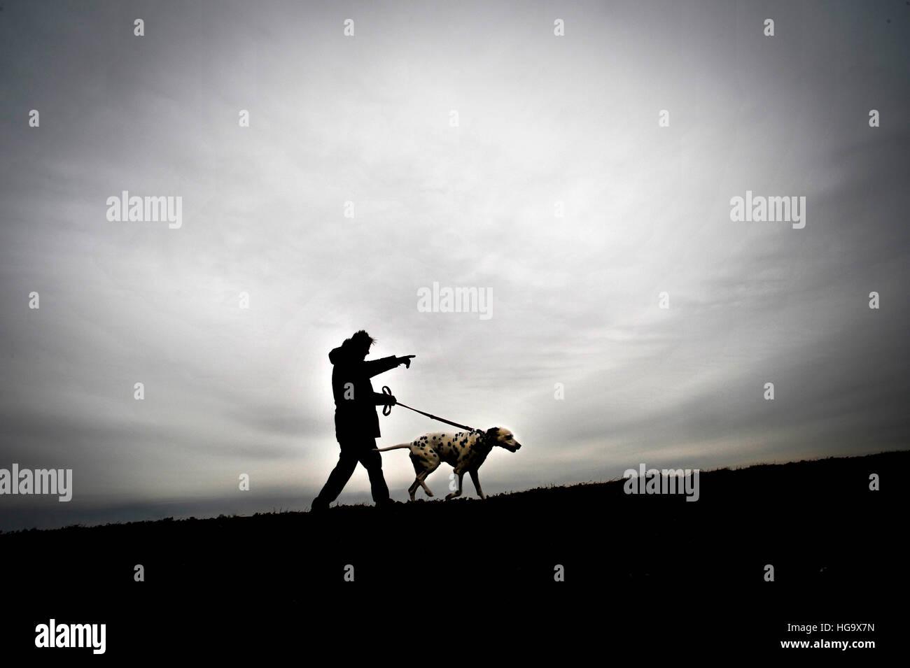 L'homme prend son chien pour une promenade. Banque D'Images