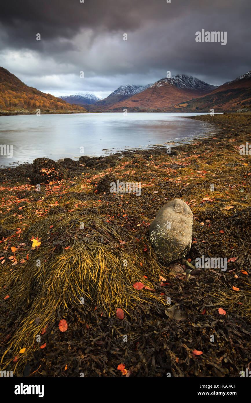 Près de Loch Creran Cregan dans les Highlands écossais. Photo Stock