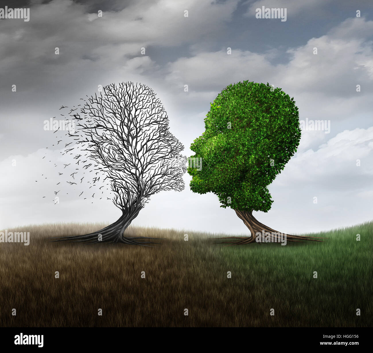 L'amour mort et le deuil d'une relation concept symbole de perte comme un arbre vert embrassant une autre Photo Stock