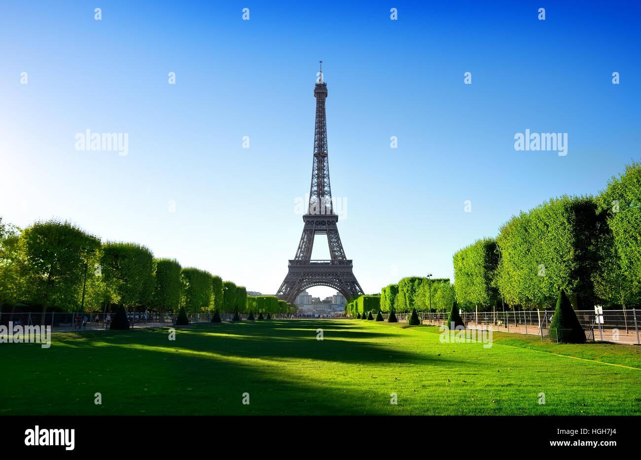 Vue sur la Tour Eiffel depuis le Champ de Mars à Paris, France Photo Stock