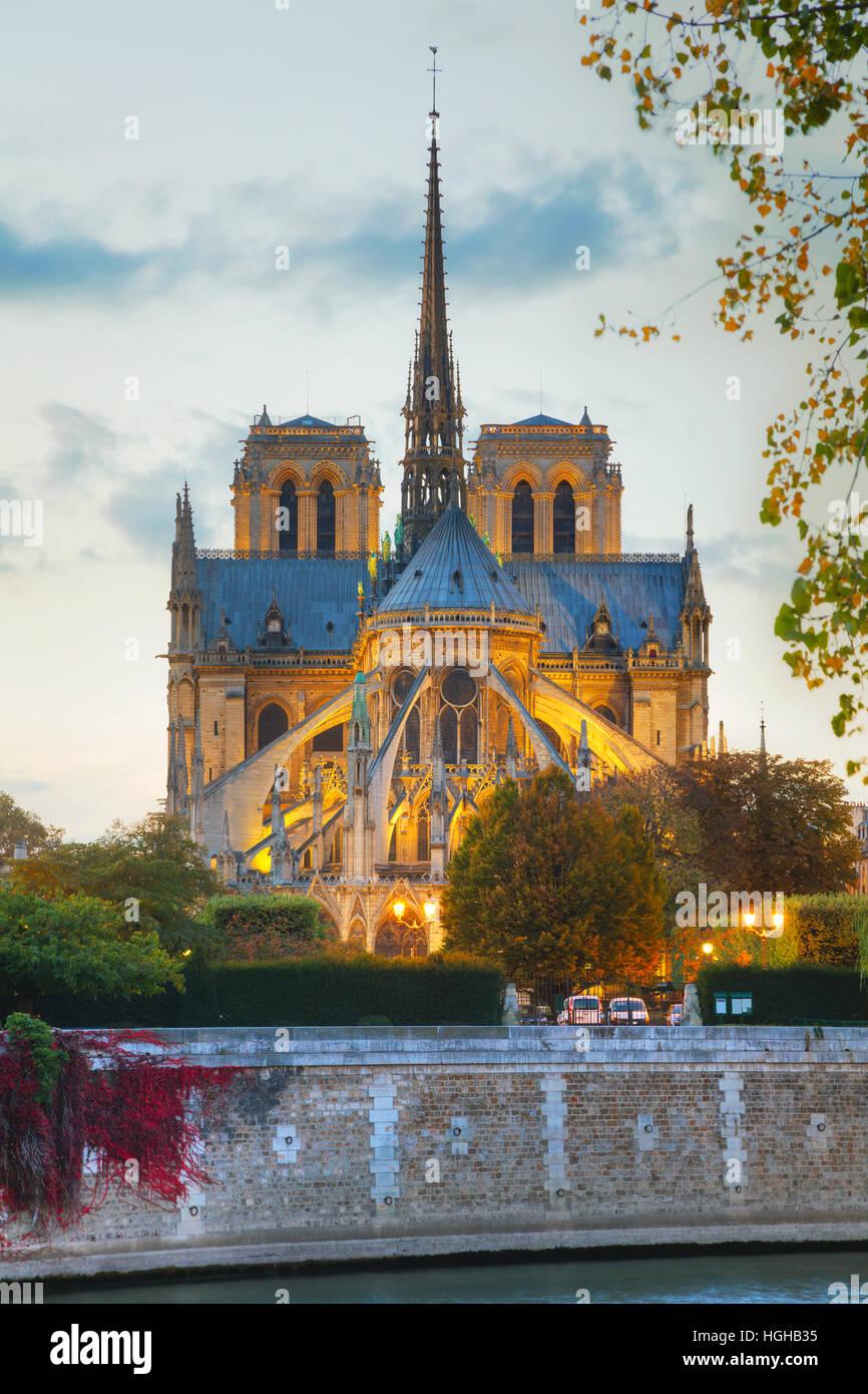 La cathédrale Notre Dame de Paris la nuit Photo Stock
