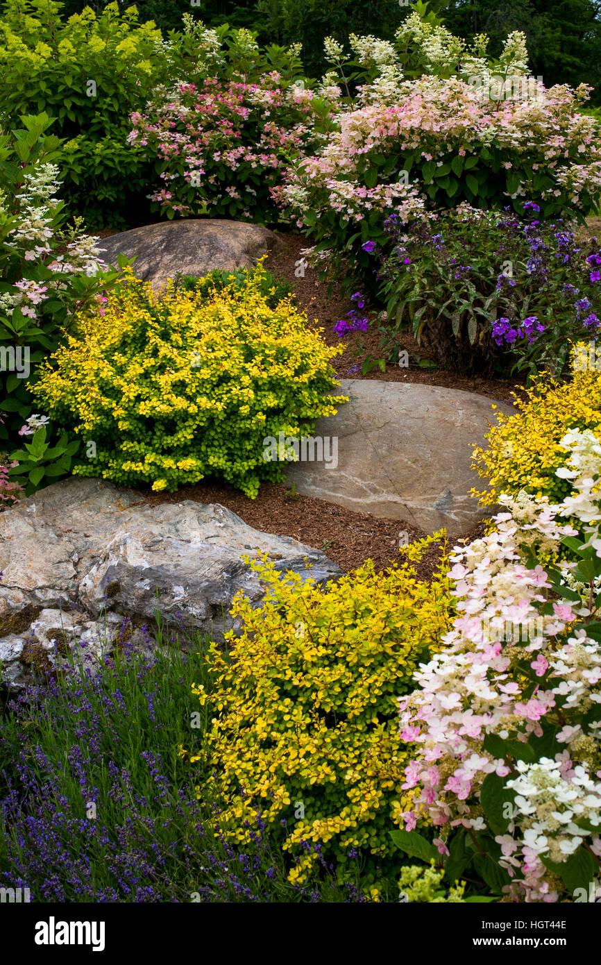 Jardin de rocaille avec des plantes à fleurs, Québec, Canada Banque ...