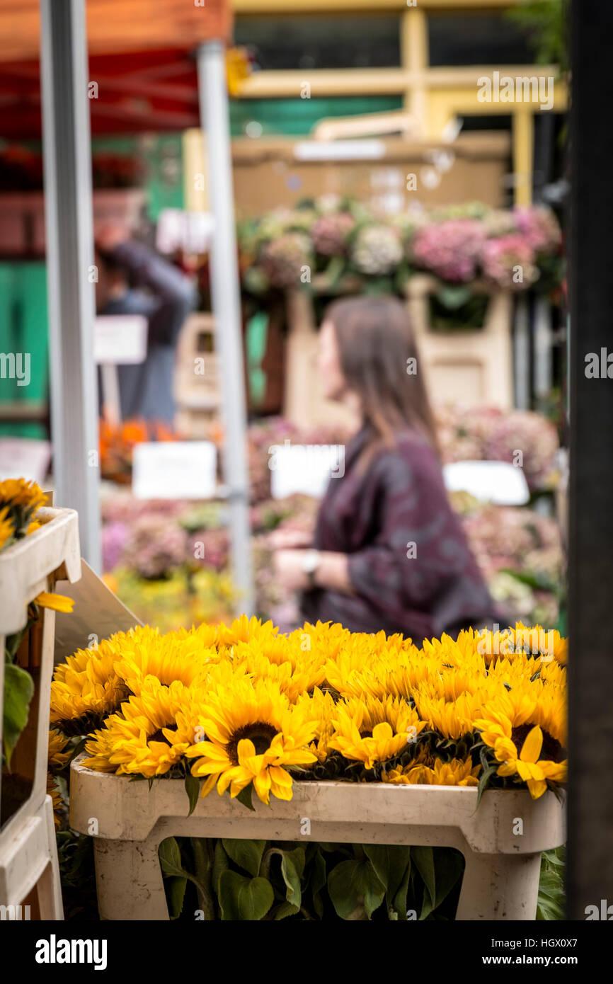 Columbia Road Flower Market, London, UK Photo Stock