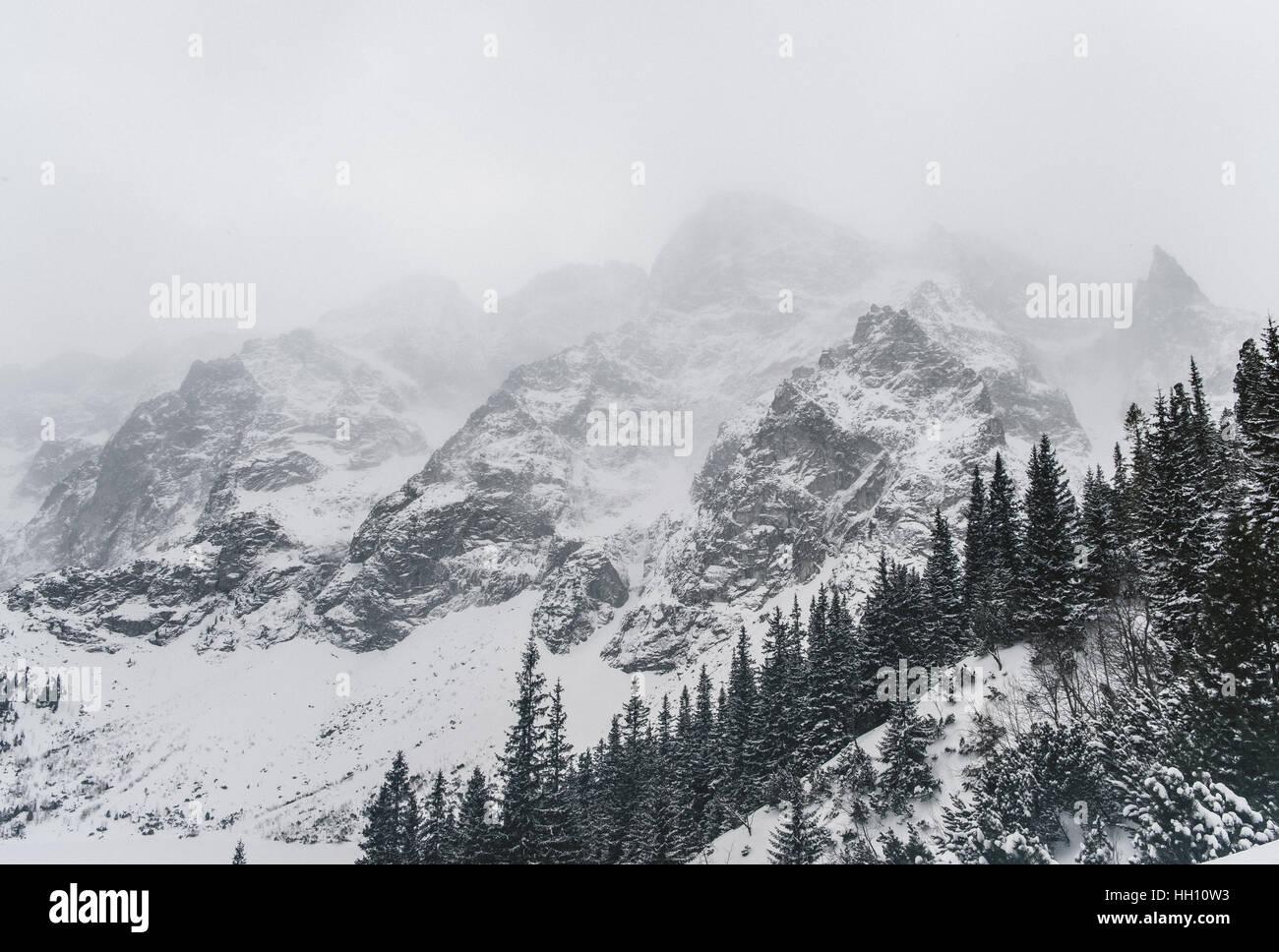 Montagnes Tatras, Pologne Photo Stock