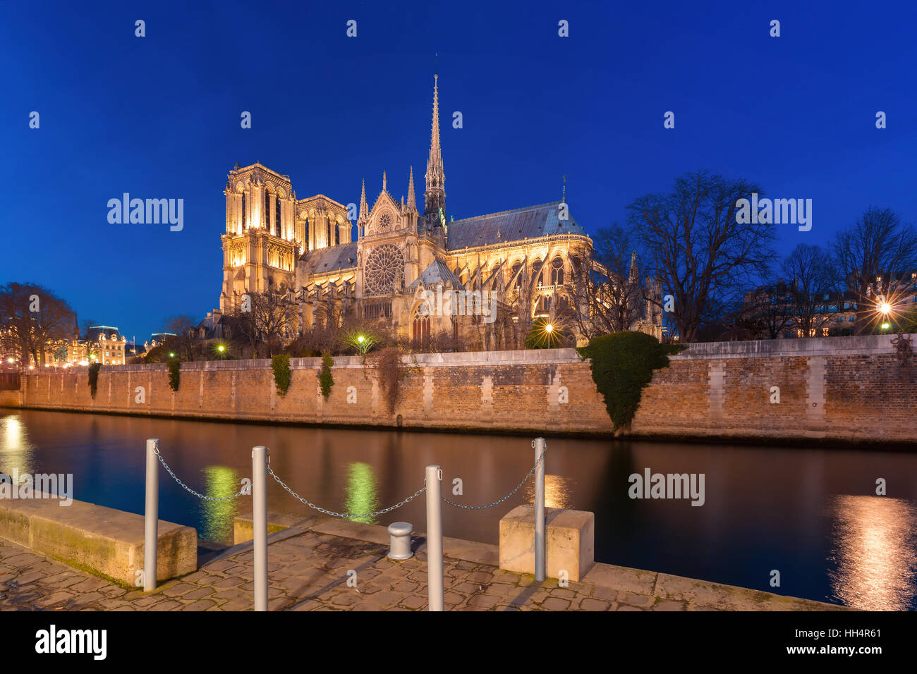 Cathédrale Notre Dame de Paris la nuit, France Photo Stock