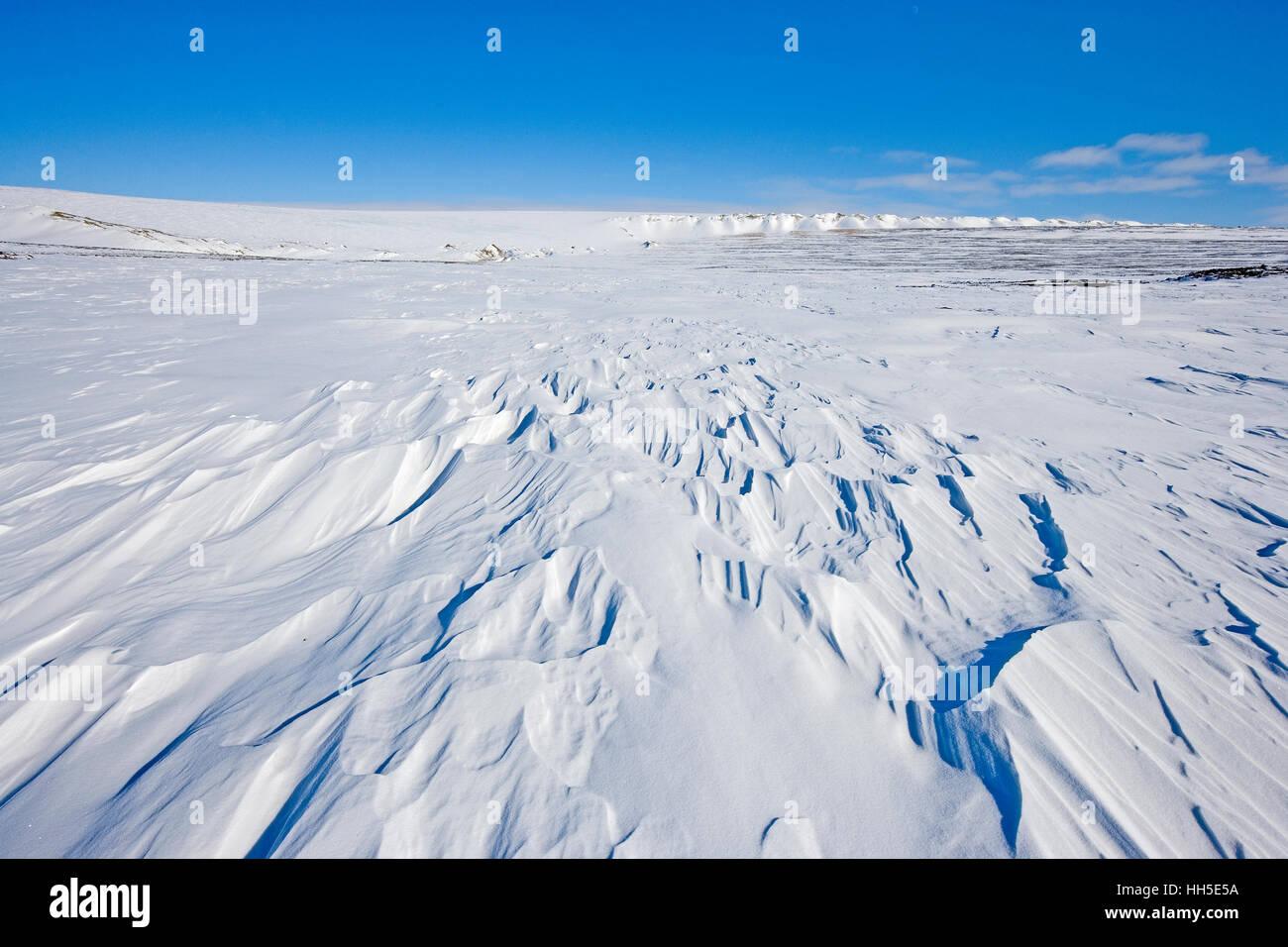 Neige soufflée par le vent avec calotte glaciaire du Groenland dans l'arrière-plan Banque D'Images