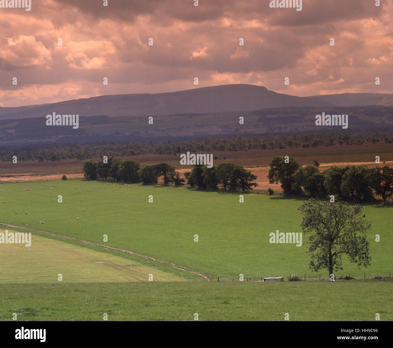 Campagne autour de Thornhill à carron Valley vers les collines Fintry. La région de Stirling. Photo Stock
