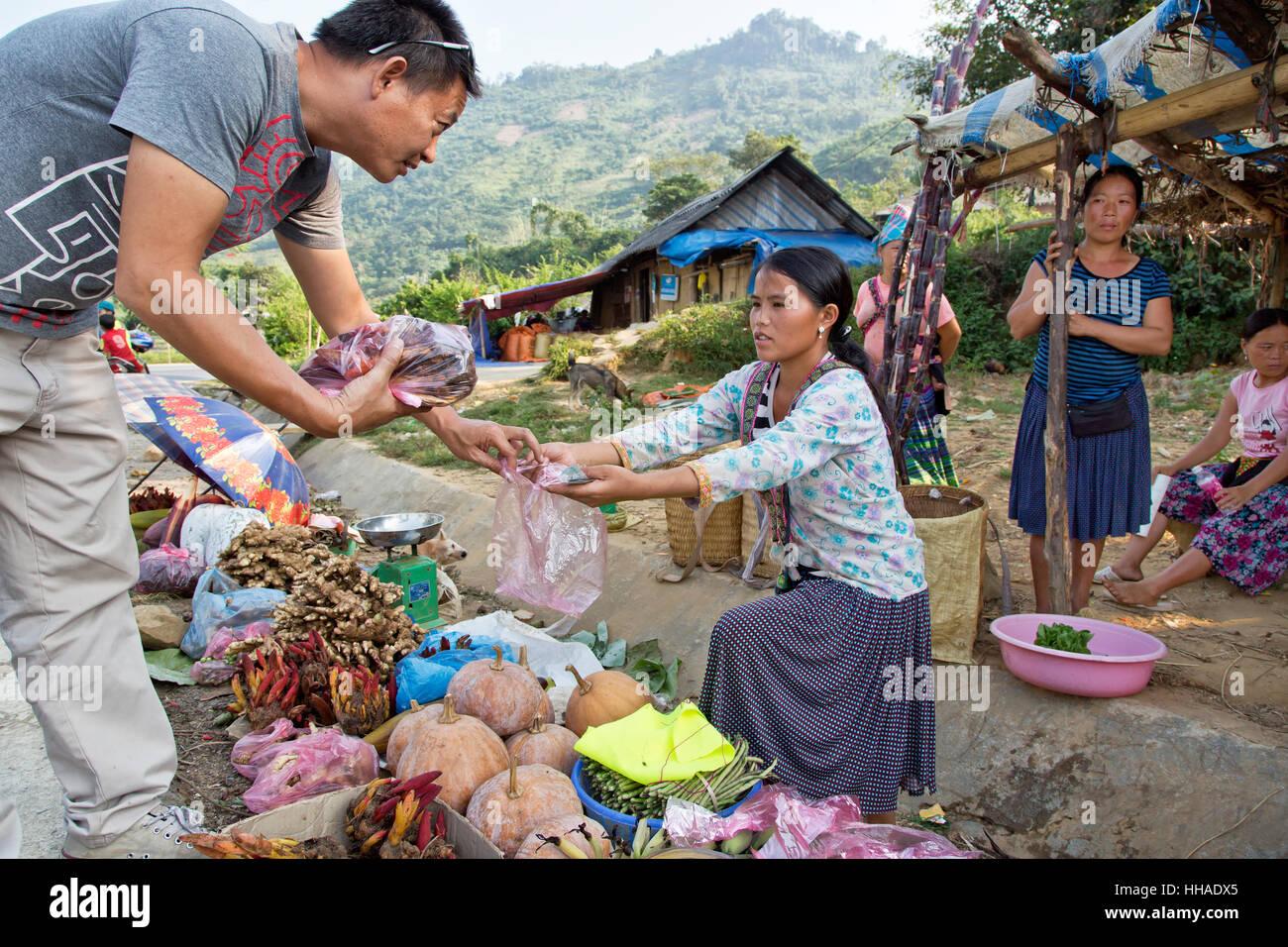 Jeune femme Hmong agriculteur vendant ses home herbes, épices, légumes et des remèdes naturels le Photo Stock