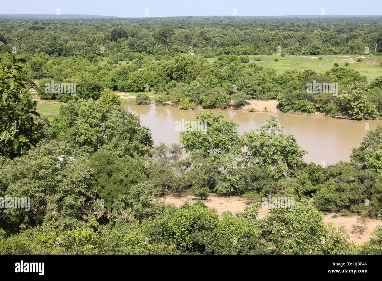 Mole National Park - Guinée savane boisée et la rivière Photo Stock