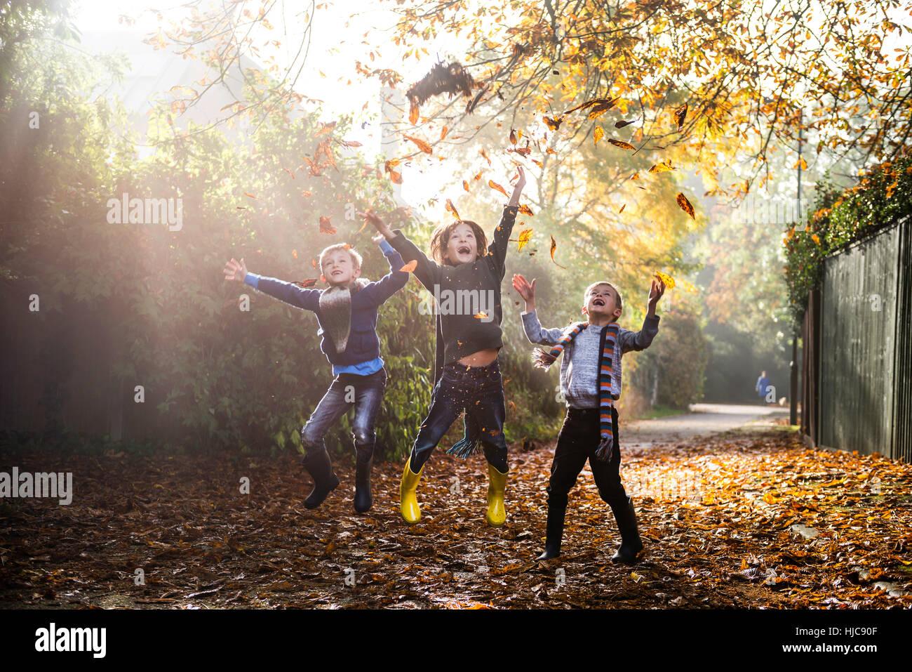 Trois jeunes garçons, jouant à l'extérieur, jetant les feuilles d'automne Photo Stock