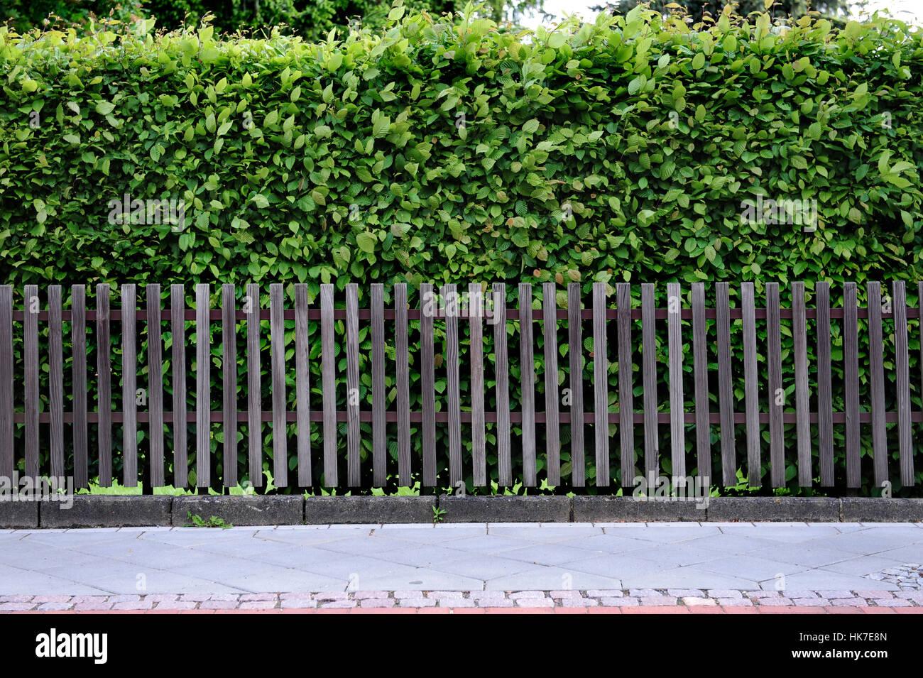 Bois, haie, clôture, en clôture, l\'escrime, la patine, latte, jardin ...