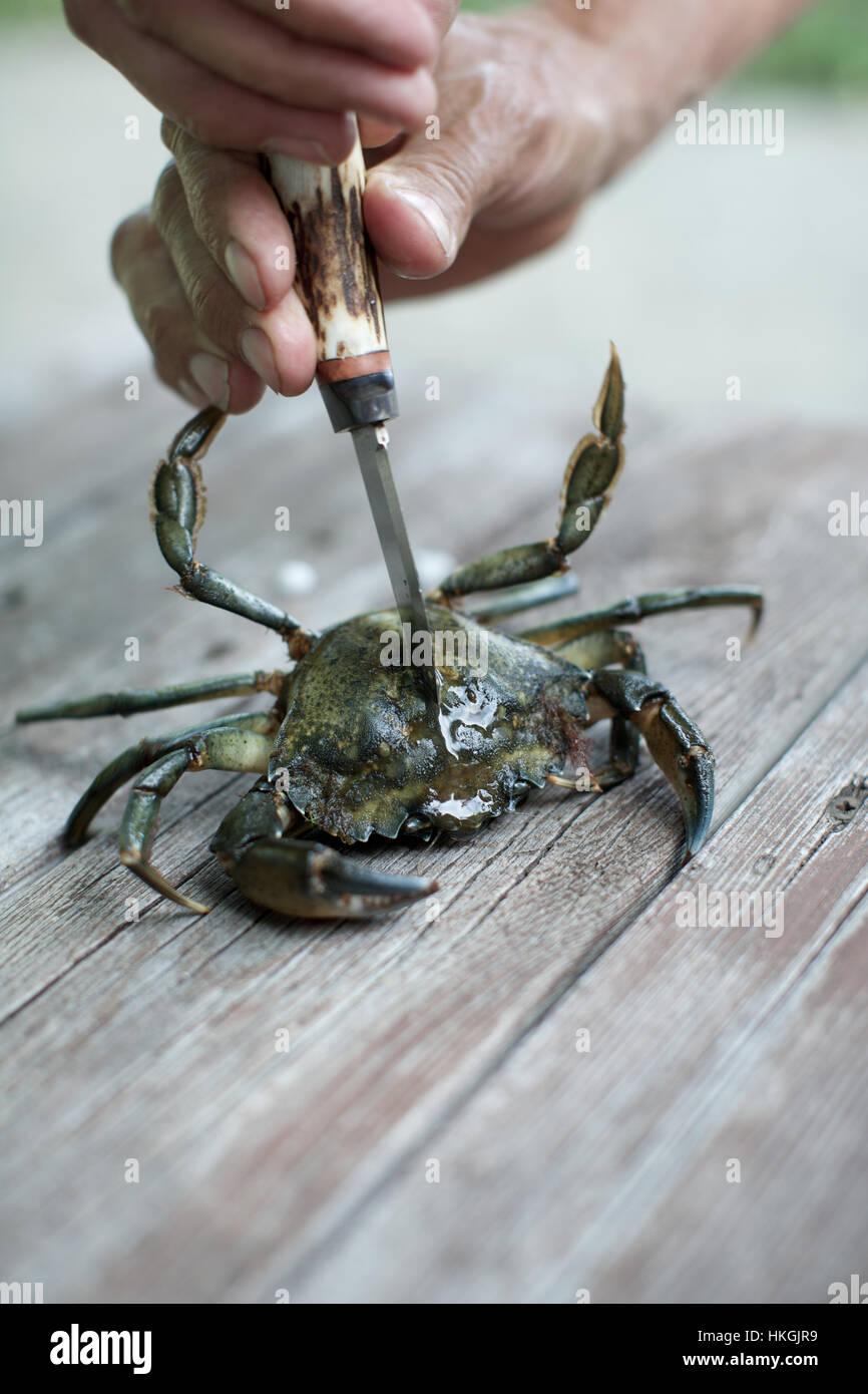 Crabe Avec Un Couteau coupe les mains à l'aide du crabe cru couteau. les fruits de mer