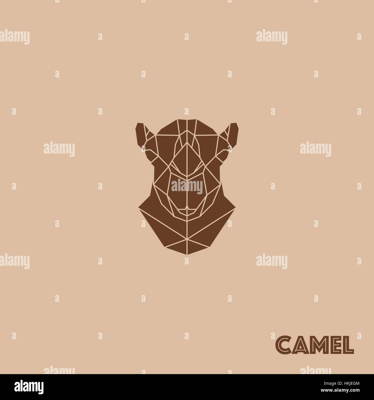 Rsum Gomtrique Triangle Camel Isol Sur Fond Brun Pour Utilisation Dans La Conception De Carte Visite Invitation Affiche Bannire Un Placard Ou