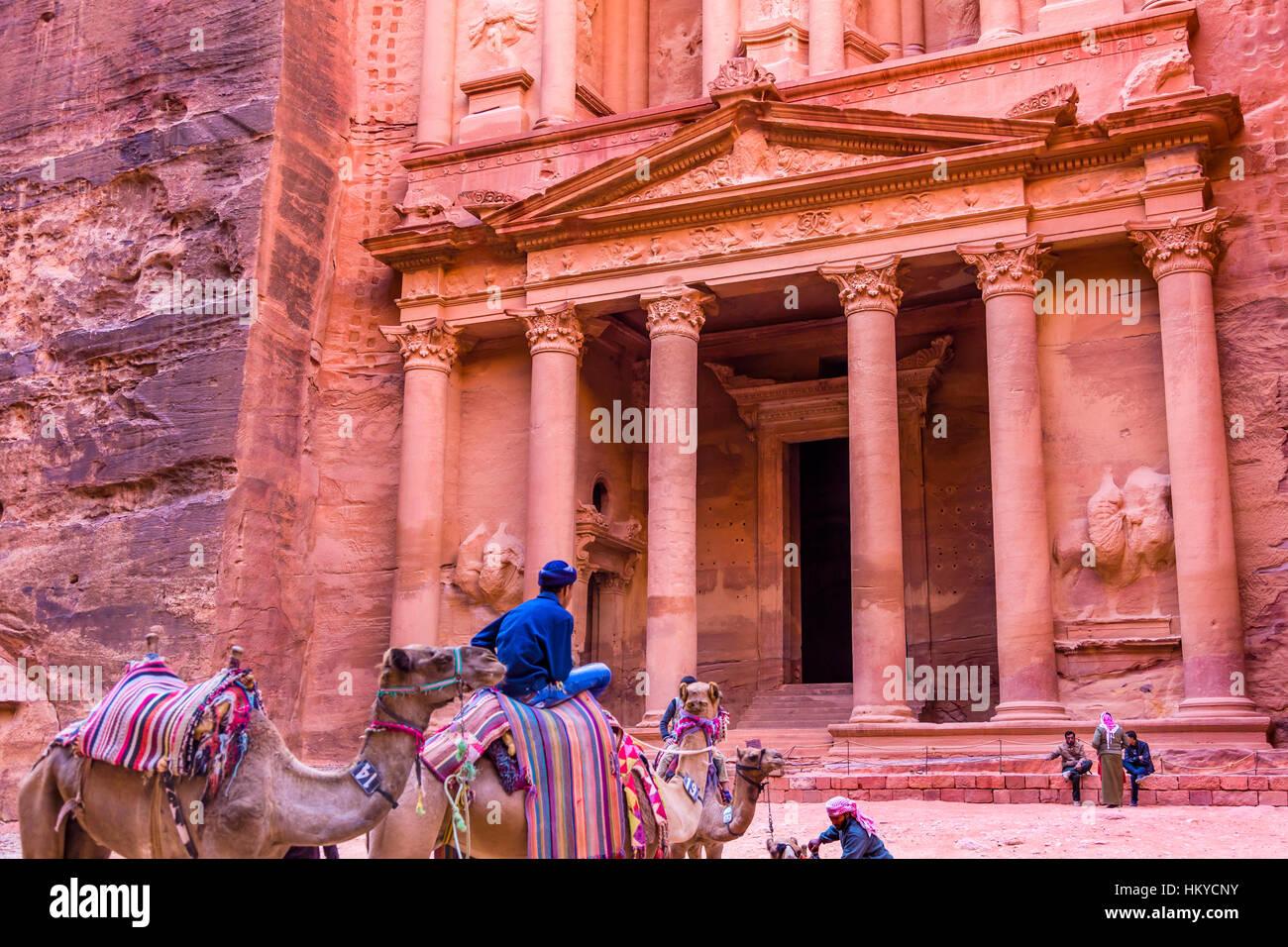 GRose du Trésor rouge dans l'après-midi devient Golden dans matin chameaux Siq Petra Jordanie Petra Photo Stock