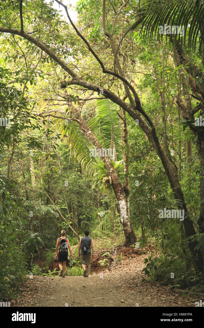Les touristes sur piste forestière, forêt tropicale de plaine, Parc National Manuel Antonio, Costa Rica. Photo Stock