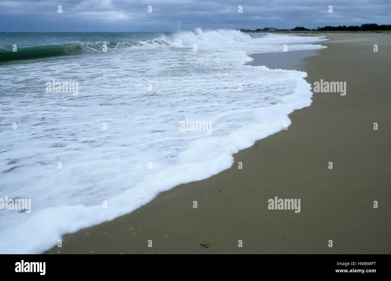 La plage de l'Est, zone de conservation Ninigret, Rhode Island. Photo Stock