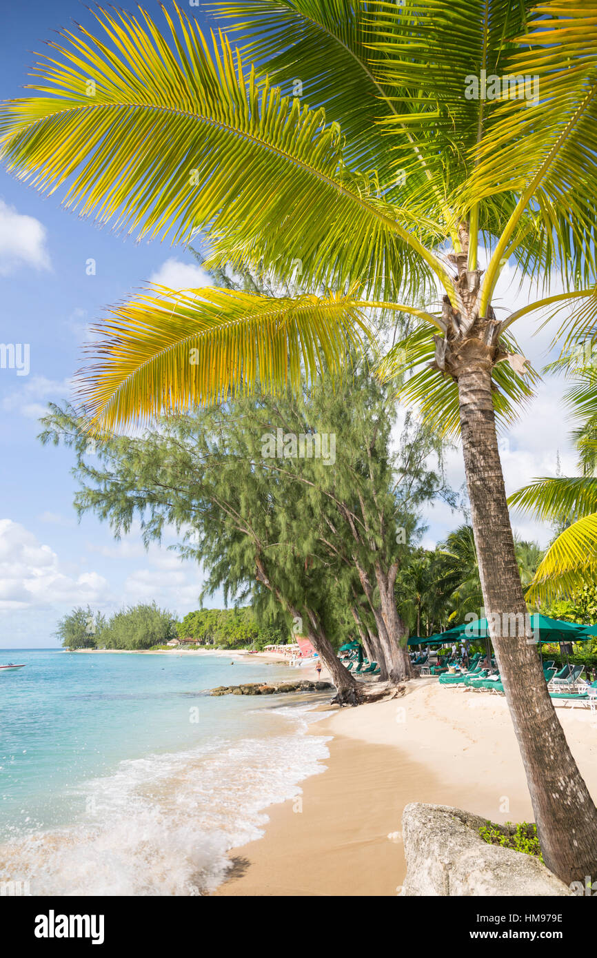 Plage, Holetown, Saint-james, Barbade, Antilles, Caraïbes, Amérique Centrale Photo Stock
