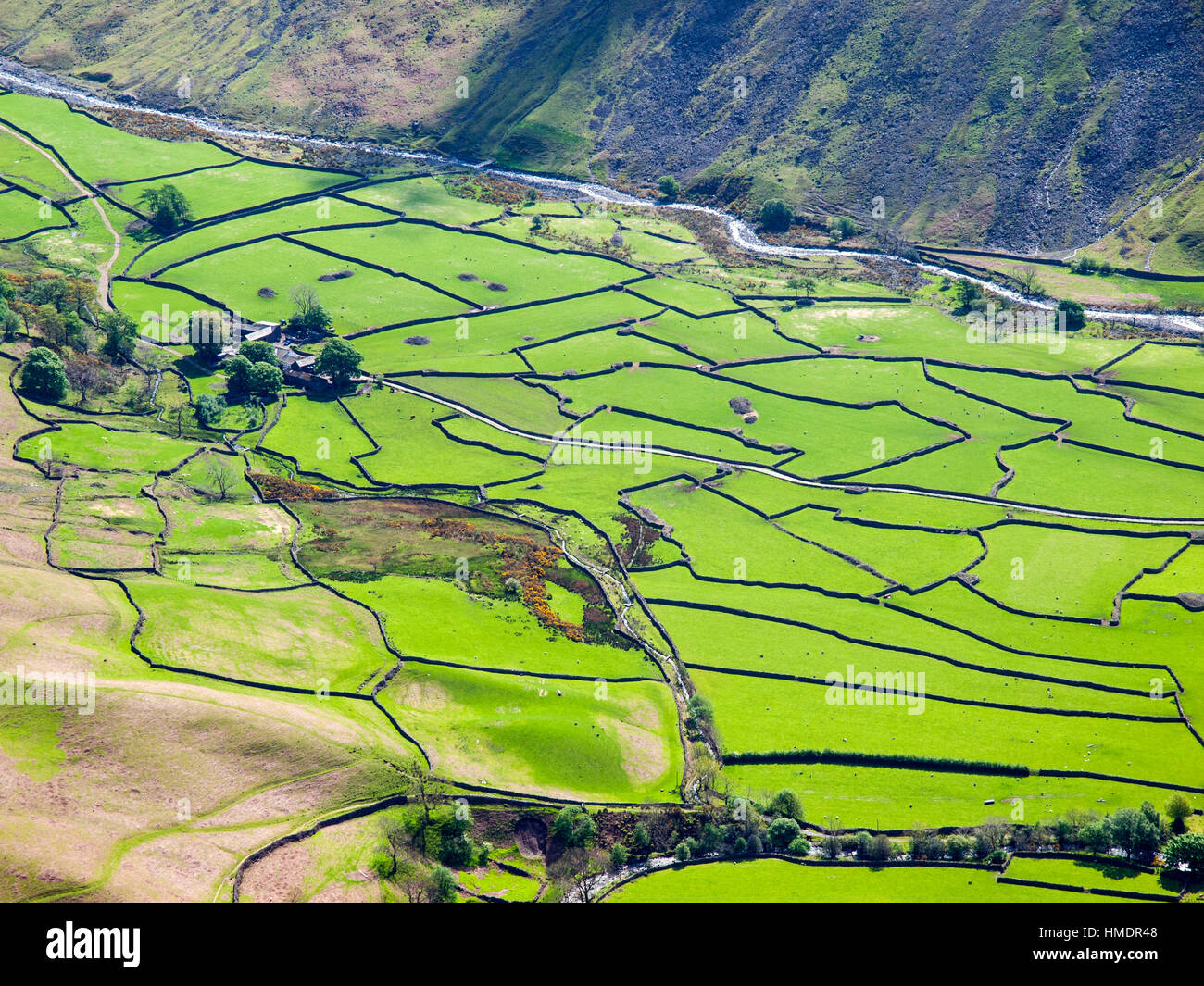 Le patchwork des champs et murs de Wasdale Head, Parc National de Lake District, UK Photo Stock